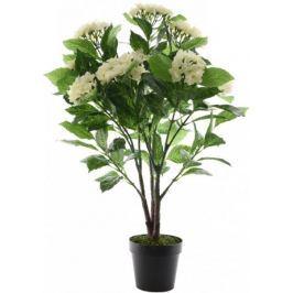 Kaemingk Hortenzie v květináči 86 cm