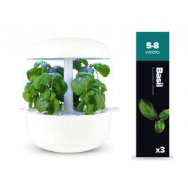 Plantui náplň pro smart květináč - Bazalka, 3ks v balení