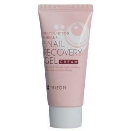 MIZON Pleťový gel s filtrátem hlemýždího sekretu 80% pro problematickou pleť (Snail Recovery Gel Cream) 45