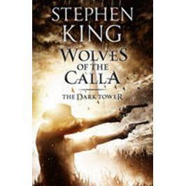 King Stephen: Dark Tower 5: Wolves of Calla