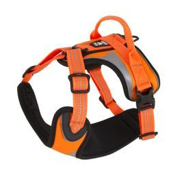 Hurtta Postroj Lifeguard Dazzle 100-120cm oranžový