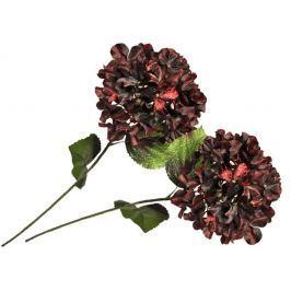 EverGreen Hortensie velkokvětá 2 ks vínová
