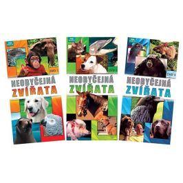 Neobyčejná zvířata: kolekce (3 DVD) - DVD