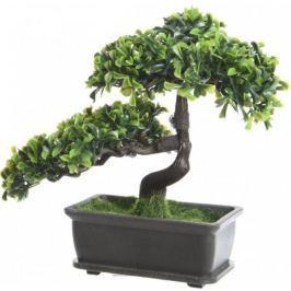 Kaemingk Bonsai v hranatém květináči 4