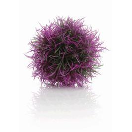 Oase Barevná vodní tráva fialová