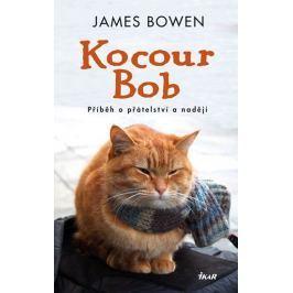 Bowen James: Kocour Bob