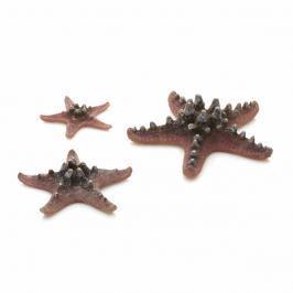 Oase Akvarijní dekorace mořské hvězdice růžové