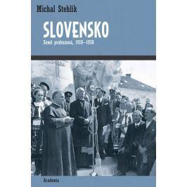 Stehlík Michal: Slovensko - Země probuzená 1918-1938
