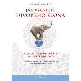Baysová Jan Chozen: Jak vycvičit divokého slona... a další dobrodružství na cestě bdělosti. Zenová m