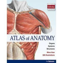 kolektiv: Atlas of Anatomy : The Human Body Described in 13 Systems