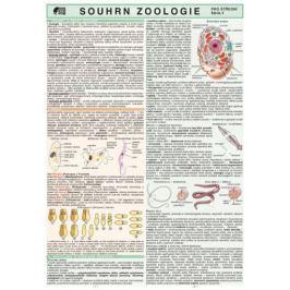 Koubek Petr: Souhrn zoologie pro SŠ
