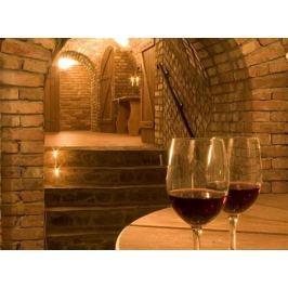 Poukaz Allegria - ochutnávka vín s pobytem pro dva Bukovany