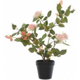 Kaemingk Růžový keř v květináči, růžový, 50 cm