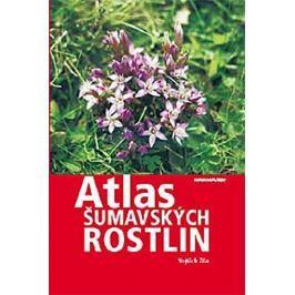Žíla Vojtěch: Atlas šumavských rostlin