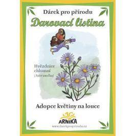 Arnika Darovací listina - Adopce květiny na louce - Hvězdnice chlumní