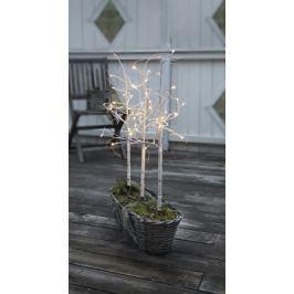 Světelný stromeček STAR TRADING Birch, 3 ks