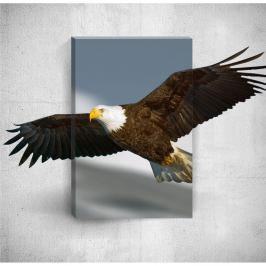 Nástěnný 3D obraz Mosticx Eagle, 40 x 60 cm