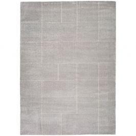Šedý koberec Universal Tanum Plata, 160 x 230 cm