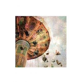 Art Tropz Dekorativní nástěnný obraz VV200